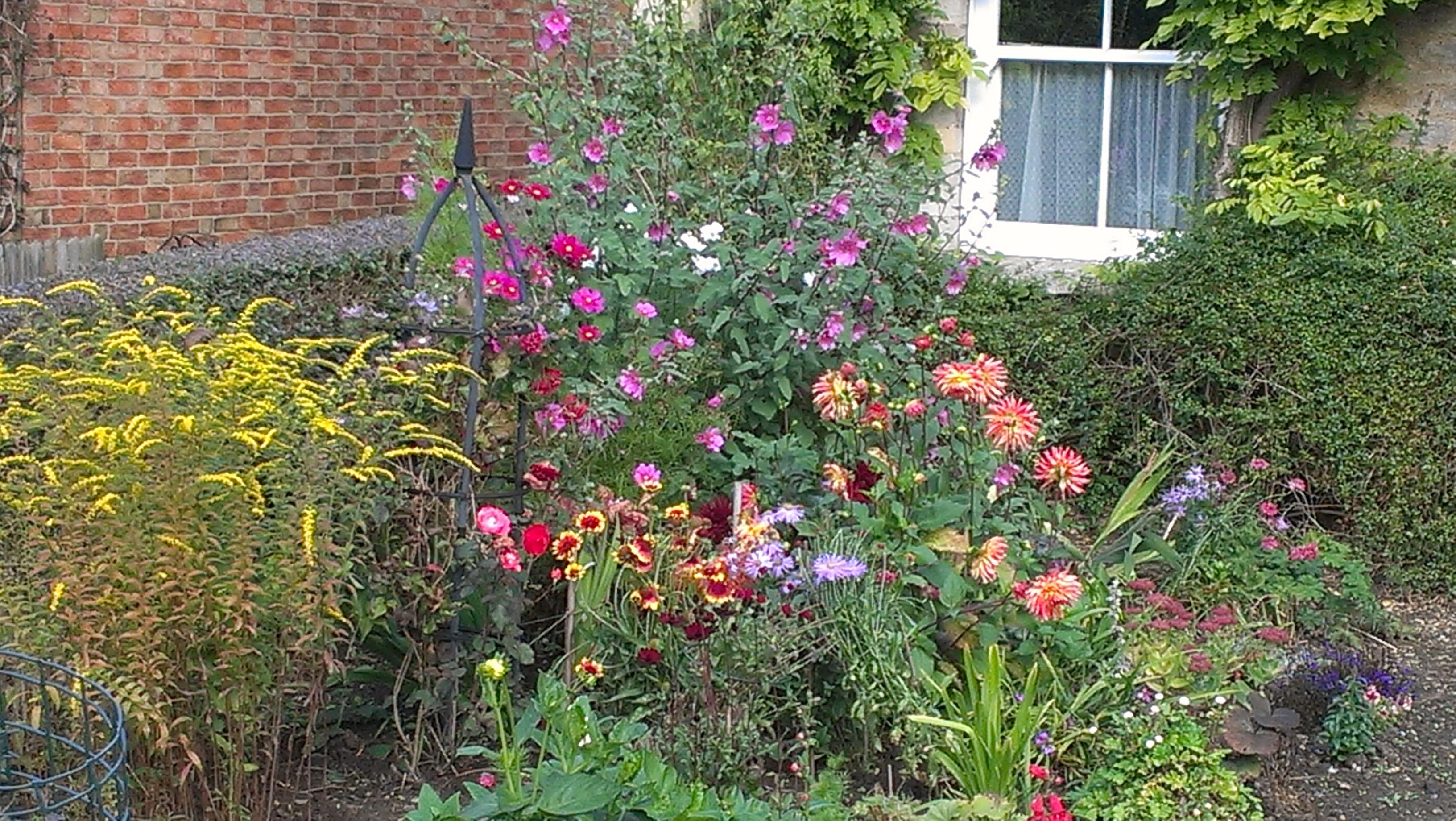 Graham's front garden