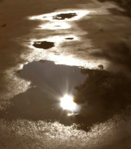 Sun in puddle2