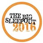 the-big-sleep-out